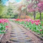 Piękny ,a także porządny ogród to zasługa wielu godzin spędzonych  w jego zaciszu w toku pielegnacji.